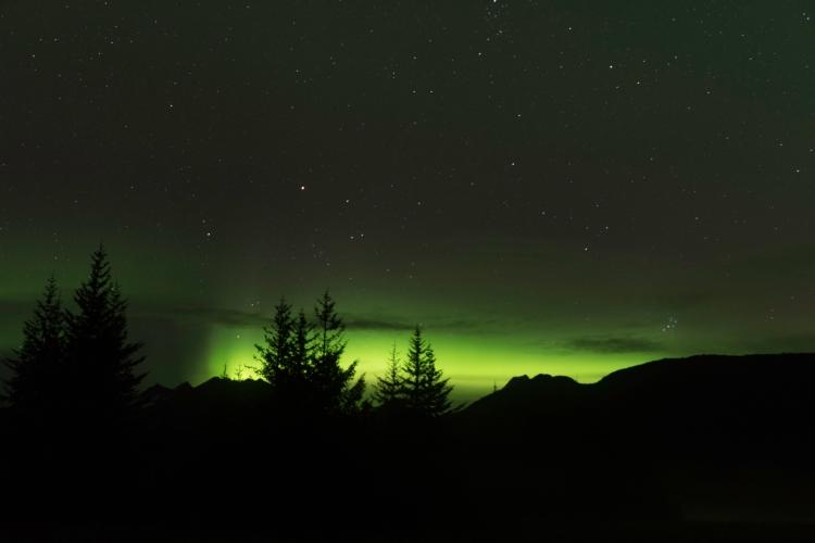 Aurora-95.jpg